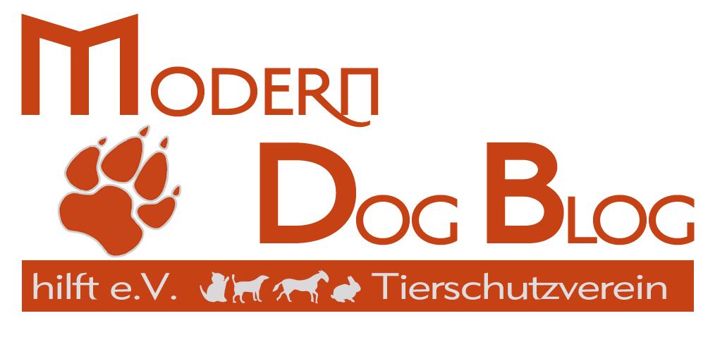 Modern Dog Blog Hilft e.V.